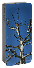 Dead Oak Tree Portable Battery Charger