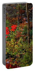 6 Of 6 Dead River Falls  Marquette Michigan Section Portable Battery Charger