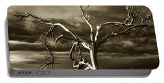 Portable Battery Charger featuring the photograph Dead Tree In Death Valley 10 by Micah May