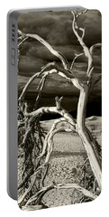 Portable Battery Charger featuring the photograph Dead Tree In Death Valley 13 by Micah May