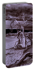 Portable Battery Charger featuring the photograph Dead Tree In Death Valley 6 by Micah May