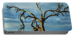 Portable Battery Charger featuring the photograph Dead Tree In Death Valley 7 by Micah May