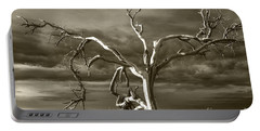Portable Battery Charger featuring the photograph Dead Tree In Death Valley 8 by Micah May