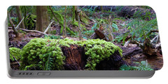 Decomposers Portable Battery Charger