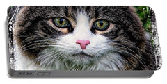 Portable Battery Charger featuring the mixed media Decorative Maine Coon Cat A4122016 by Mas Art Studio