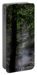 Deep In The Swamp Portable Battery Charger by Skip Willits