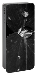 Portable Battery Charger featuring the photograph Deep Refraction Between Leaves by Darcy Michaelchuk