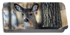 Portable Battery Charger featuring the photograph Deer At The Salad Bar by Paul Freidlund