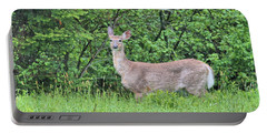 Portable Battery Charger featuring the photograph Deer by Debbie Stahre