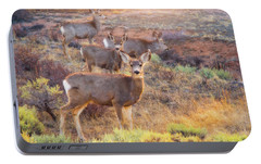 Portable Battery Charger featuring the photograph Deer In The Sunlight by Darren White
