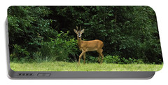 Deer In The Woods Portable Battery Charger