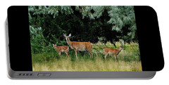 Portable Battery Charger featuring the photograph Deer Mom by Larry Campbell