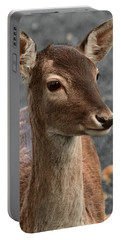 Deer Portrait Portable Battery Charger