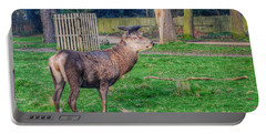 Deer Spotted At Richmond Park  Portable Battery Charger
