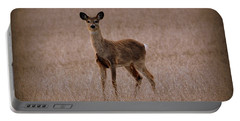 Deerfield Portable Battery Charger