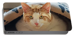 Portable Battery Charger featuring the photograph Delectable Companion.. by Nina Stavlund