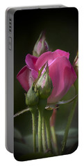 Portable Battery Charger featuring the photograph Delicate Rose With Buds by Michele A Loftus