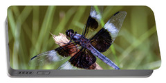 Portable Battery Charger featuring the photograph Delicate Wings Of A Dragonfly by Kerri Farley