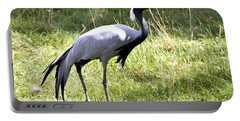 Portable Battery Charger featuring the photograph Demoiselle Crane by Teresa Zieba