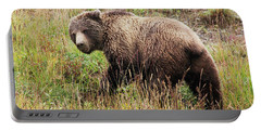 Denali Grizzly Portable Battery Charger