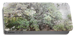 Portable Battery Charger featuring the photograph Desert Canyon Tree by Andrea Hazel Ihlefeld