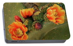Portable Battery Charger featuring the photograph Desert Flame by Lucinda Walter