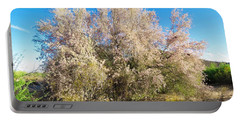 Desert Ironwood Tree In Bloom - Early Morning Portable Battery Charger