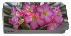 Desert Rose Or Chuanchom Dthb2105 Portable Battery Charger