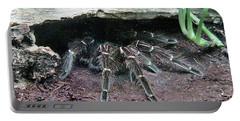 Desert Tarantula Portable Battery Charger