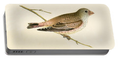Desert Trumpeter Bullfinch Portable Battery Charger by English School