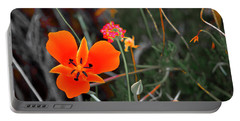 Portable Battery Charger featuring the photograph Desert Wildflowers by Penny Lisowski