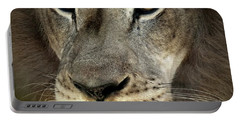 Determined Lion Portable Battery Charger