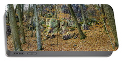 Devils Lake Rock Formation  Portable Battery Charger