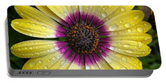 Dew Dropped Daisy Portable Battery Charger