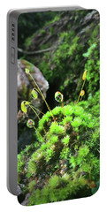 Dew Drops On Moss And Sprouts In The Sun Portable Battery Charger