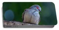 Diamond Dove Portable Battery Charger