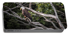 Portable Battery Charger featuring the photograph Diamond Highway Eagle by Richard Bean
