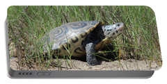 Diamondback Terrapin Mount Sinai New York Portable Battery Charger