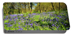 Dinefwr Bluebell Walk Portable Battery Charger