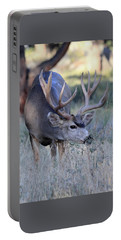 Portable Battery Charger featuring the photograph Dinner Time by Shane Bechler