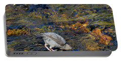 Portable Battery Charger featuring the photograph Diving For Food by Ausra Huntington nee Paulauskaite