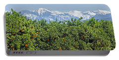 Portable Battery Charger featuring the photograph Dm6850-e Orange Grove And The Sierra Nevada Ca by Ed Cooper Photography