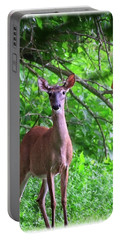 Doe And Cardinal Portable Battery Charger
