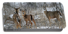 Does And Fawns Portable Battery Charger by Brook Burling