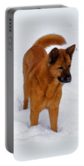 Dog Days Of Winter Portable Battery Charger