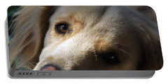 Dog Eyes Portable Battery Charger