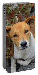 Doggie Style Portable Battery Charger