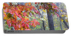 Dogwood 2 Portable Battery Charger