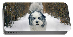 Doing The Dog Walk Portable Battery Charger by Keith Armstrong