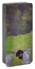 Portable Battery Charger featuring the photograph Doing The Turkey Strut by Susan Rissi Tregoning
